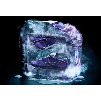 NIKE SB X CONCEPTS (THE PURPLE LOBSTER DUNK)